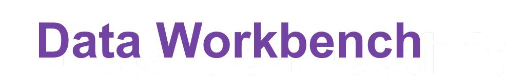 Syniti Data Workbench